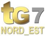 TG 7 Gold